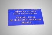 placa institutie cu litere din bronz Pretext Advertising